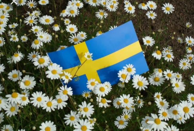 På Onsdag den 6:e Juni är det Sveriges nationaldag. Då det är en röd dag håller …